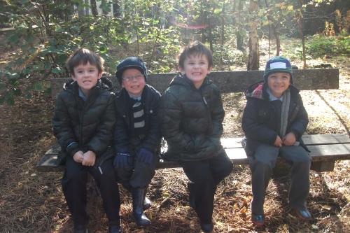 pinewoods13-190